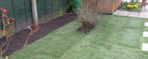 Landscaping, Block Paving, Driveways & Patios Essex 1 - All Seasons Tree Surgeon