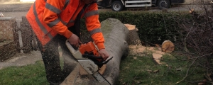 Landscaping, Block Paving, Driveways & Patios South East London - All Seasons Tree Surgeon