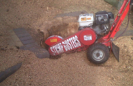 banner-stump-grinding-2
